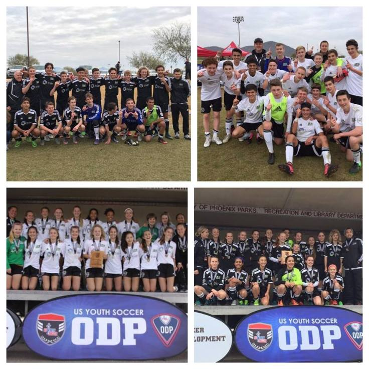 odp-winners