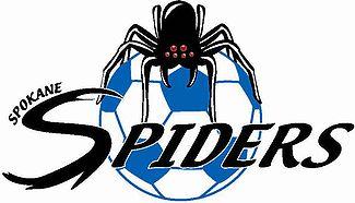 spokanespiders