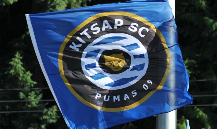 pumas_flag